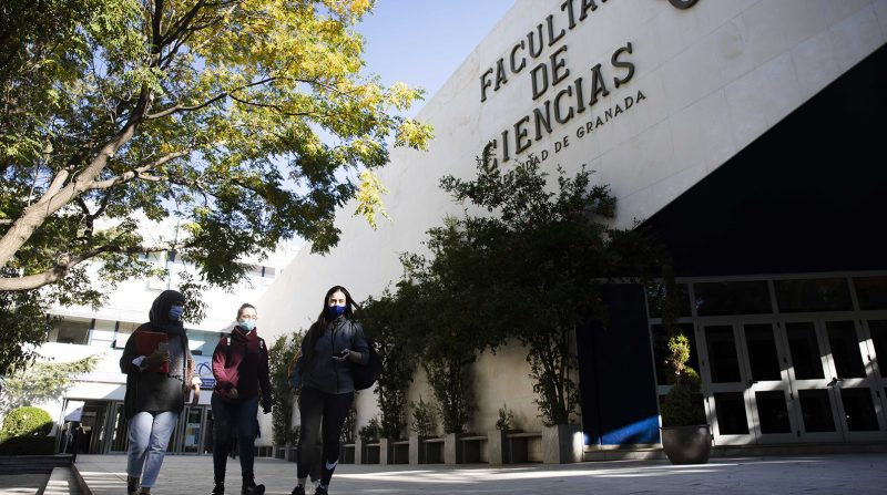 clases online Universidad de Granada
